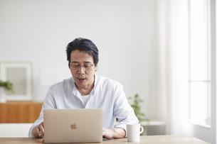 ノートパソコンを見る男性の写真素材 [FYI04885312]