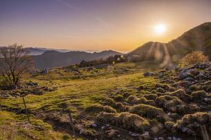 【自然風景】夜明けの四国カルスト 朝の写真素材 [FYI04885525]