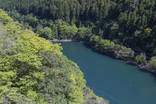 新緑のダム湖の写真素材 [FYI04885551]
