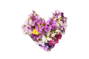 スターチスの花束の写真素材 [FYI04886084]