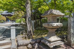 伊豆修禅寺 山門脇に立つ燈籠の写真素材 [FYI04886111]