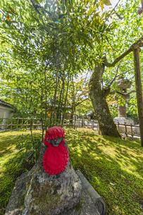 伊豆修禅寺 境内に点在する個性的な地蔵の写真素材 [FYI04886127]