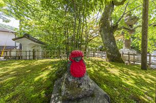 伊豆修禅寺 境内に点在する個性的な地蔵の写真素材 [FYI04886129]