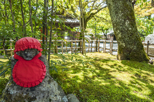 伊豆修禅寺 境内に点在する個性的な地蔵の写真素材 [FYI04886130]
