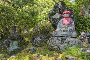 伊豆修禅寺 境内に点在する個性的な地蔵の写真素材 [FYI04886133]
