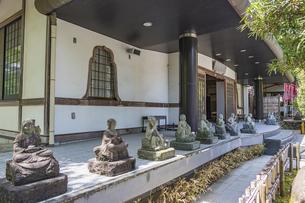 伊豆修禅寺 様々なポーズで座る地蔵が並ぶ檀信徒会館の写真素材 [FYI04886143]
