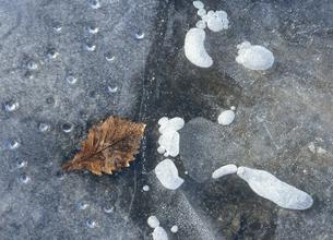 凍結した湖面(北海道・標茶町)の写真素材 [FYI04886165]