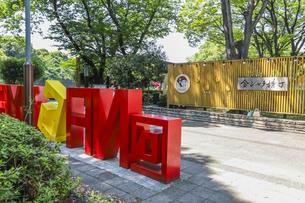 金シャチ横丁宗春ゾーン入り口風景の写真素材 [FYI04886262]