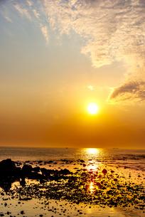 犬吠埼西明浦より宝満(長崎鼻)などの磯と朝焼けに染まる空と太平洋に輝く巻積雲の写真素材 [FYI04886298]