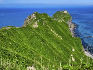 神威岬の写真素材 [FYI04886487]