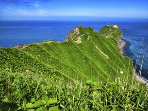 神威岬の写真素材 [FYI04886488]