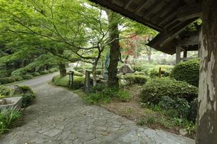 関東で最も古い寺 霊山院の写真素材 [FYI04886601]