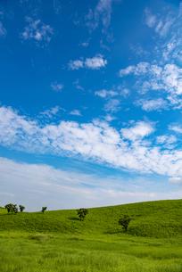 熊本県 阿蘇の草原の写真素材 [FYI04886643]