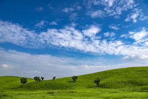 熊本県 阿蘇の草原の写真素材 [FYI04886669]