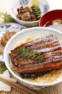 鰻丼の写真素材 [FYI04886743]
