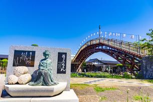 水郷潮来あやめ園の写真素材 [FYI04887266]