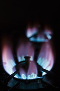ガスコンロの火の写真素材 [FYI04887668]