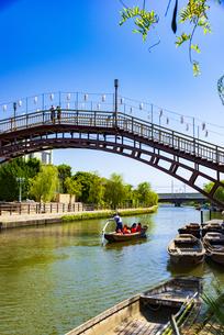 水郷潮来あやめ園から 前川のろ漕ぎ舟遊覧の写真素材 [FYI04887803]