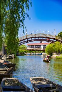 水郷潮来あやめ園から 前川のろ漕ぎ舟遊覧の写真素材 [FYI04887870]