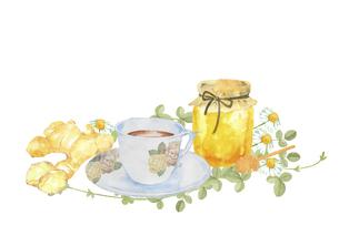 ショウガと蜂蜜とティーカップのイラスト素材 [FYI04887875]
