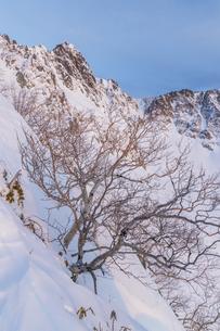 中央アルプス_サギダル尾根から宝剣岳の朝の写真素材 [FYI04887996]
