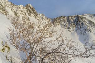 中央アルプス_サギダル尾根から宝剣岳の朝の写真素材 [FYI04887999]