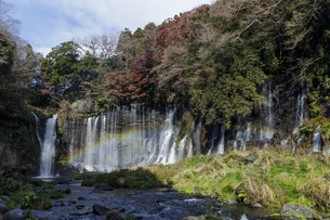 白糸の滝と虹の写真素材 [FYI04888010]
