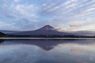 田貫湖からの夕景の富士山の写真素材 [FYI04888013]