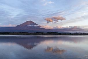 田貫湖からの夕景の富士山の写真素材 [FYI04888016]
