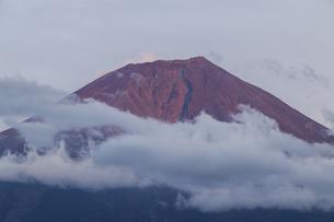 田貫湖からの富士山の写真素材 [FYI04888017]