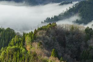 おにゅう峠の朝の写真素材 [FYI04888025]