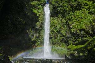 阿弥陀ヶ滝への遊歩道の写真素材 [FYI04888061]