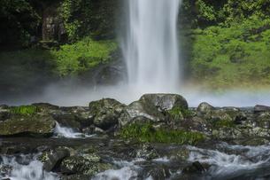阿弥陀ヶ滝の写真素材 [FYI04888067]