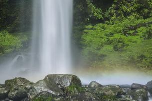 阿弥陀ヶ滝の写真素材 [FYI04888068]