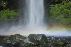 阿弥陀ヶ滝の写真素材 [FYI04888070]