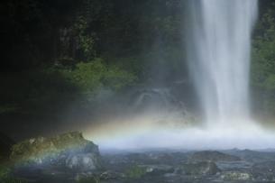 阿弥陀ヶ滝の写真素材 [FYI04888071]
