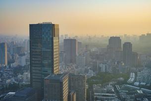 早朝の東京(東京ミッドタウン、赤坂)の写真素材 [FYI04888216]