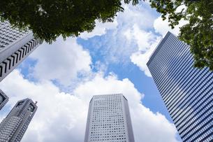 高層ビルを見上げるの写真素材 [FYI04888230]