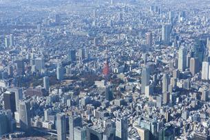 東京タワー周辺の空撮写真の写真素材 [FYI04888238]