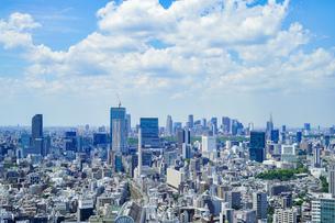 新宿・渋谷の風景の写真素材 [FYI04888250]