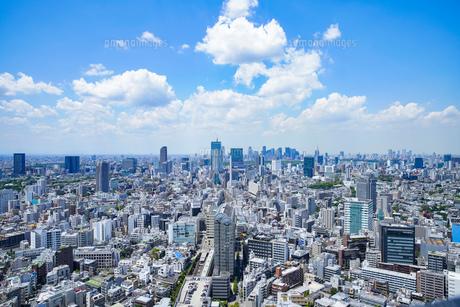 新宿・渋谷の風景の写真素材 [FYI04888252]