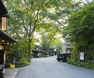 熊本県 風景 黒川温泉 温泉街点景の写真素材 [FYI04888304]