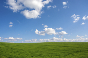 緑の草原と青空に浮かぶ雲の写真素材 [FYI04888381]