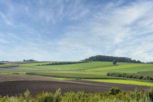 秋の空と丘陵地帯の写真素材 [FYI04888382]