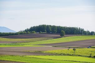 秋の空と丘陵地帯の写真素材 [FYI04888385]