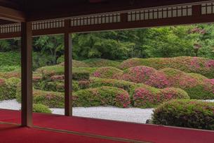 大池寺 庭園の写真素材 [FYI04888826]