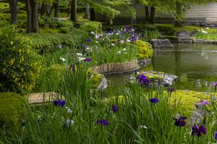 しょうざんの庭の写真素材 [FYI04888833]