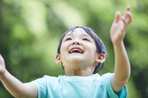 屋外で遊ぶ男の子の写真素材 [FYI04889078]