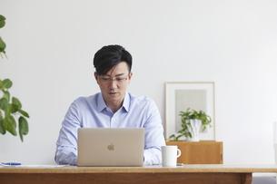 ノートパソコンを使い仕事をする男性の写真素材 [FYI04889582]