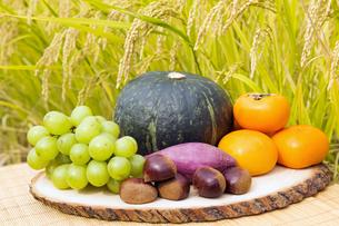 秋の食材と収穫間近の稲穂の写真素材 [FYI04889621]